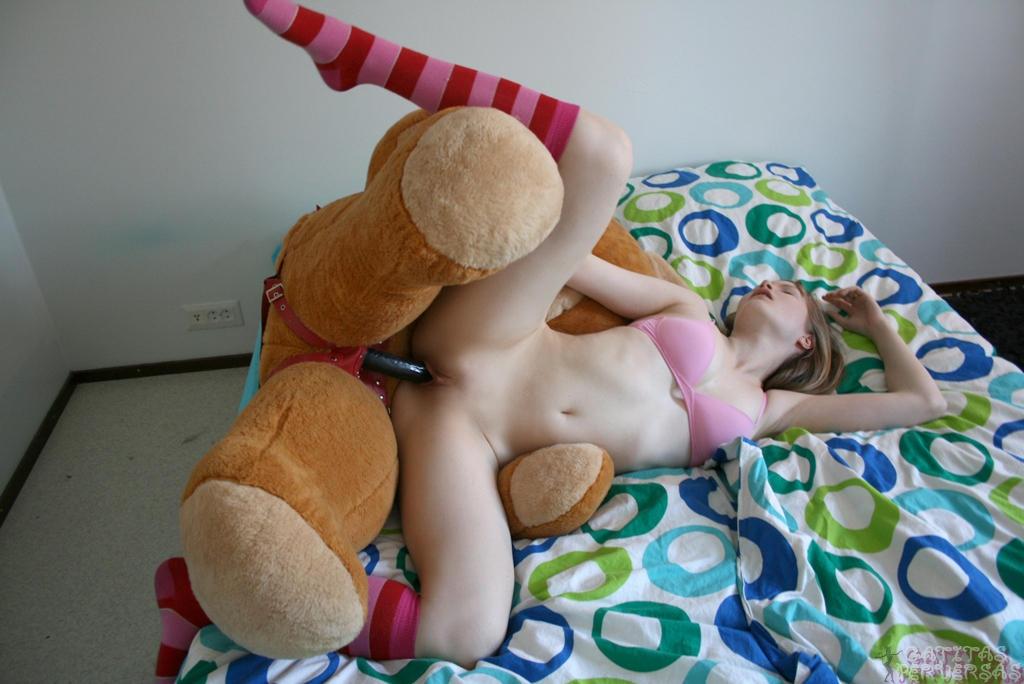 osos morenas xxx