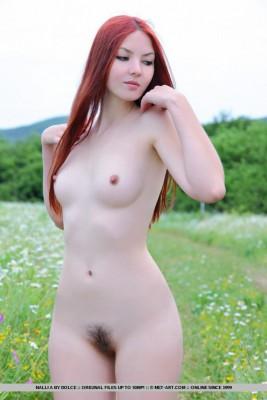 14 (7)